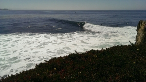 Loveyourwholelife, surf, RV Life, Santa Cruz nalu